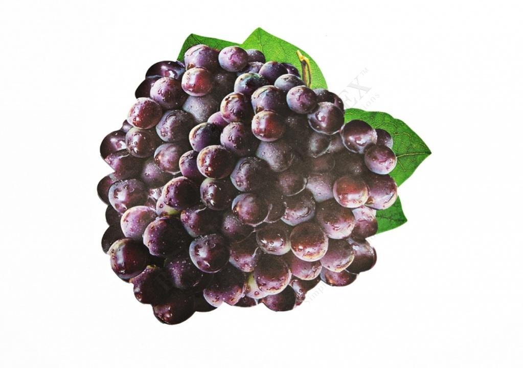 Набор салфеток под горячее «виноград»