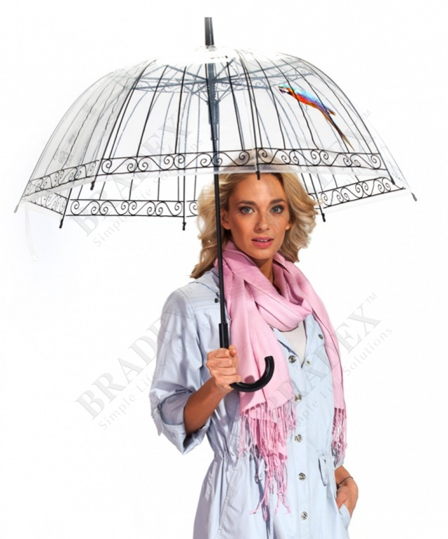 Зонт-трость «пташка в клетке» (umbrella «bird in cage»)