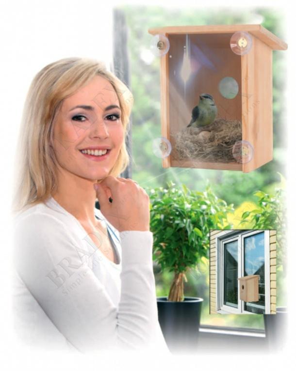 Чудо-скворечник «шпион» (my spy birdhouse)